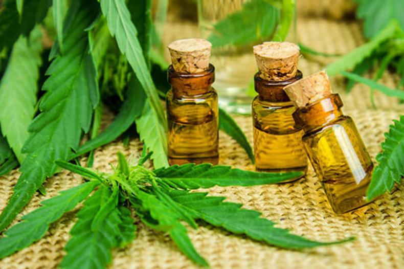 Le cannabis CBD vue par la FDA, comprendre les enjeux